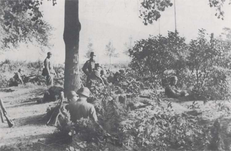 Operation Market Garden September 17 - 27 1944 - A brief rest. Pictures Market Garden